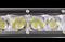 Светодиодная балка PL-G1-100W Cree - фото 4757
